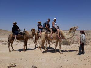 טיולי גמלים במצפה רמון